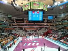 Denmark vs Poland in the Handball World Championship